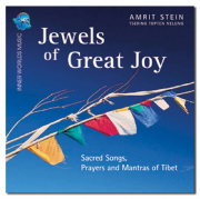 Jewels of Great Joy - Amrit Stein